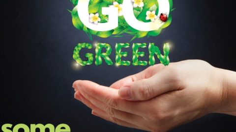10 Tips to Go Green at Home