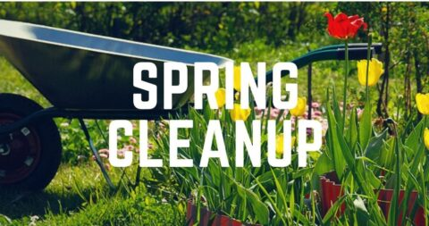 Township Clean up Events