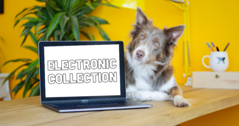 Electronic Collection Event – Military Recycling Center
